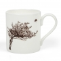 Irish mugs, windswept hawthorn tree