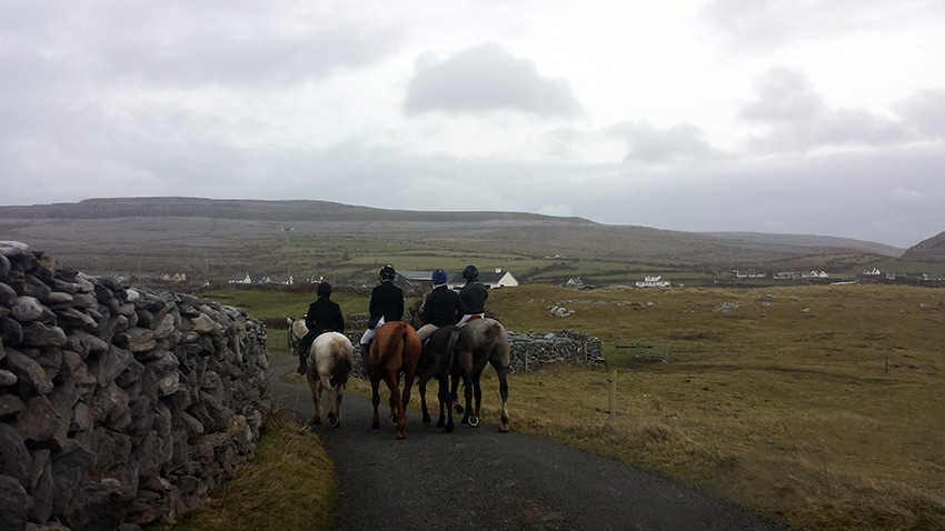 Horses and riders. Spot the redhead